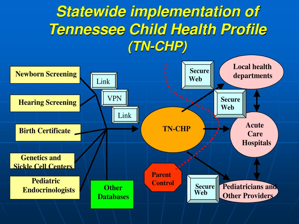 Statewide implementation of Tennessee Child Health Profile