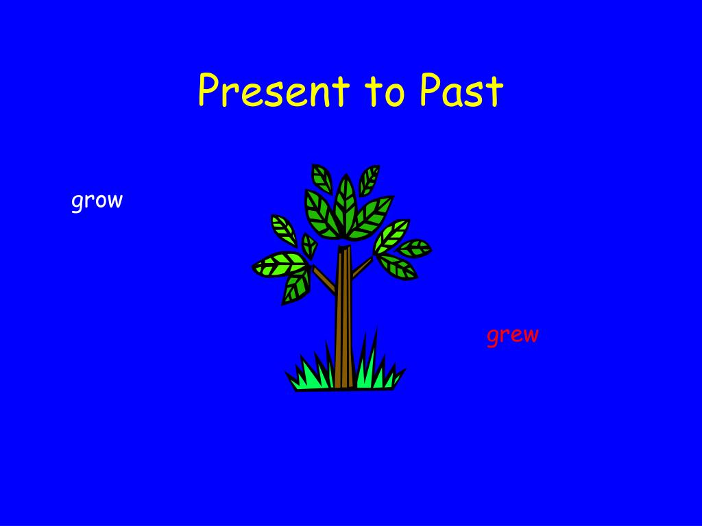 Present to Past