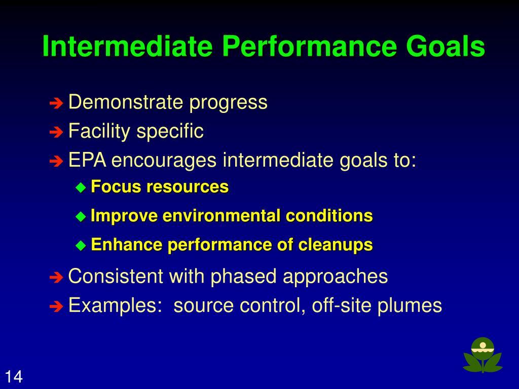 Intermediate Performance Goals