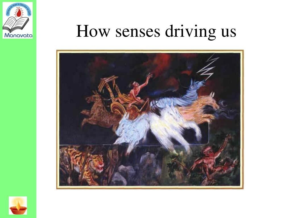 How senses driving us