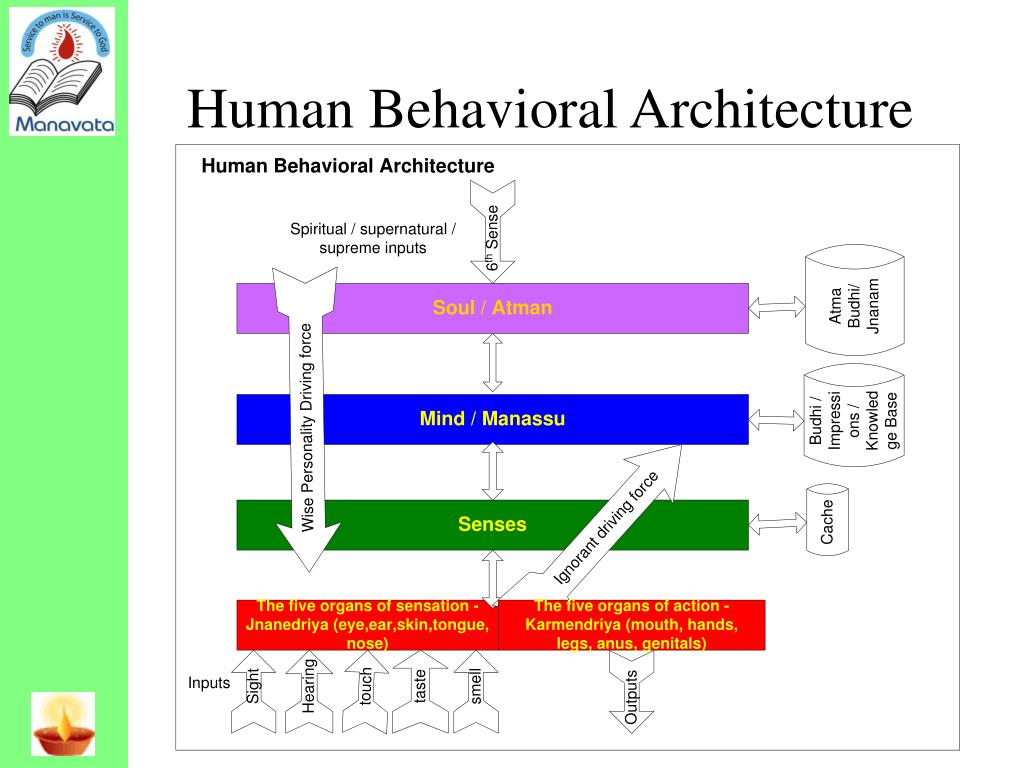 Human Behavioral Architecture