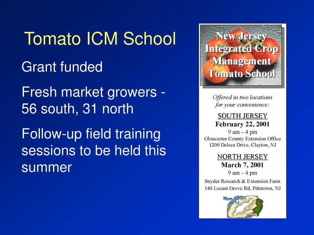 Tomato ICM School