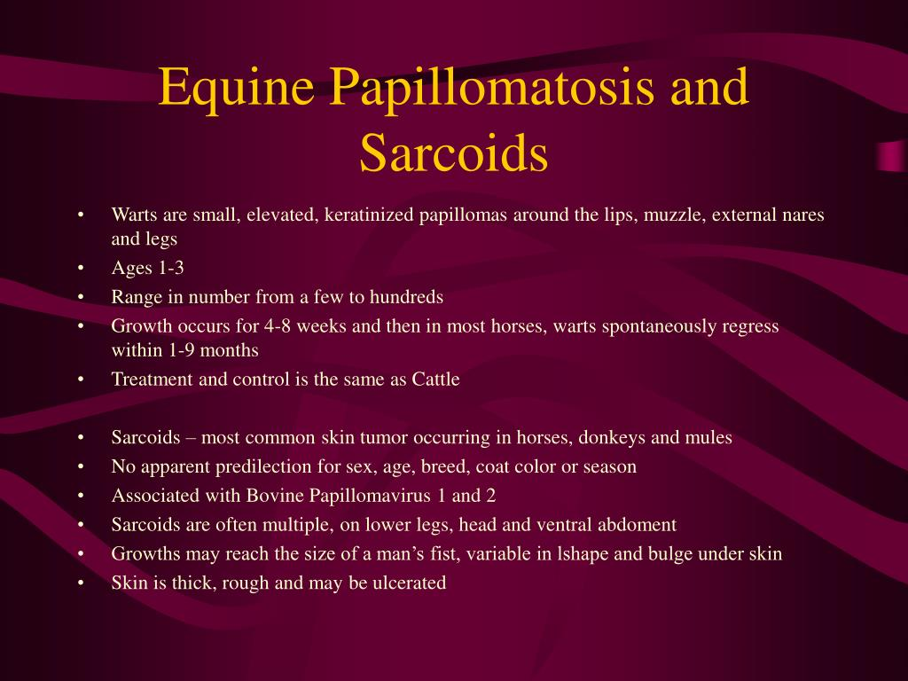 Equine Papillomatosis and Sarcoids