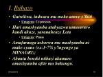 i ibibazo10