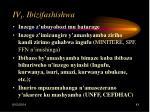 iv 1 ibizifashishwa