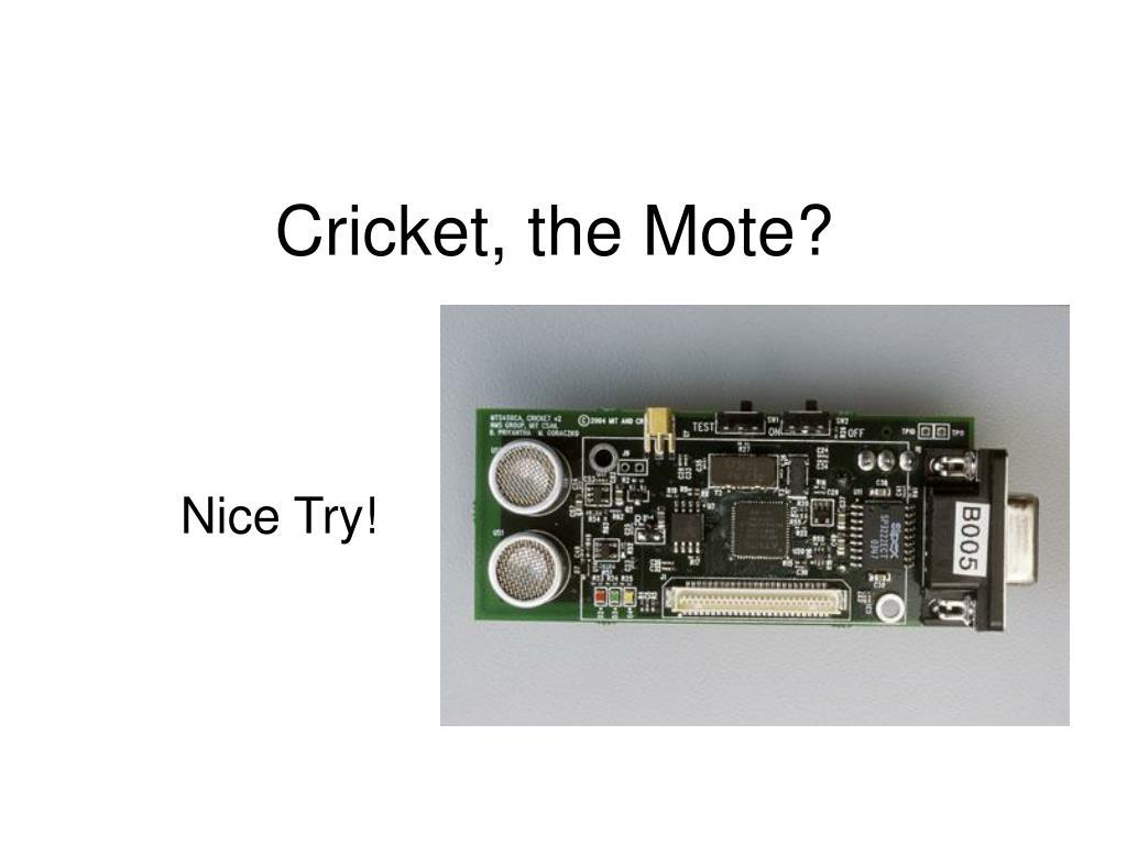 Cricket, the Mote?
