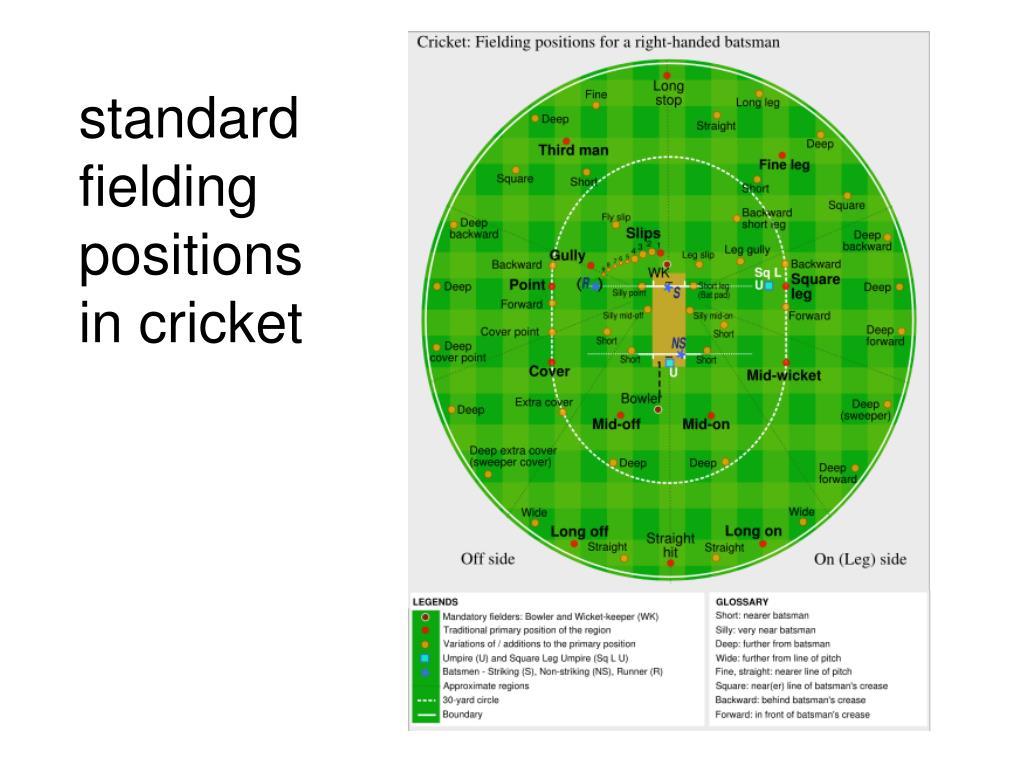 standard fielding