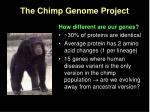 the chimp genome project
