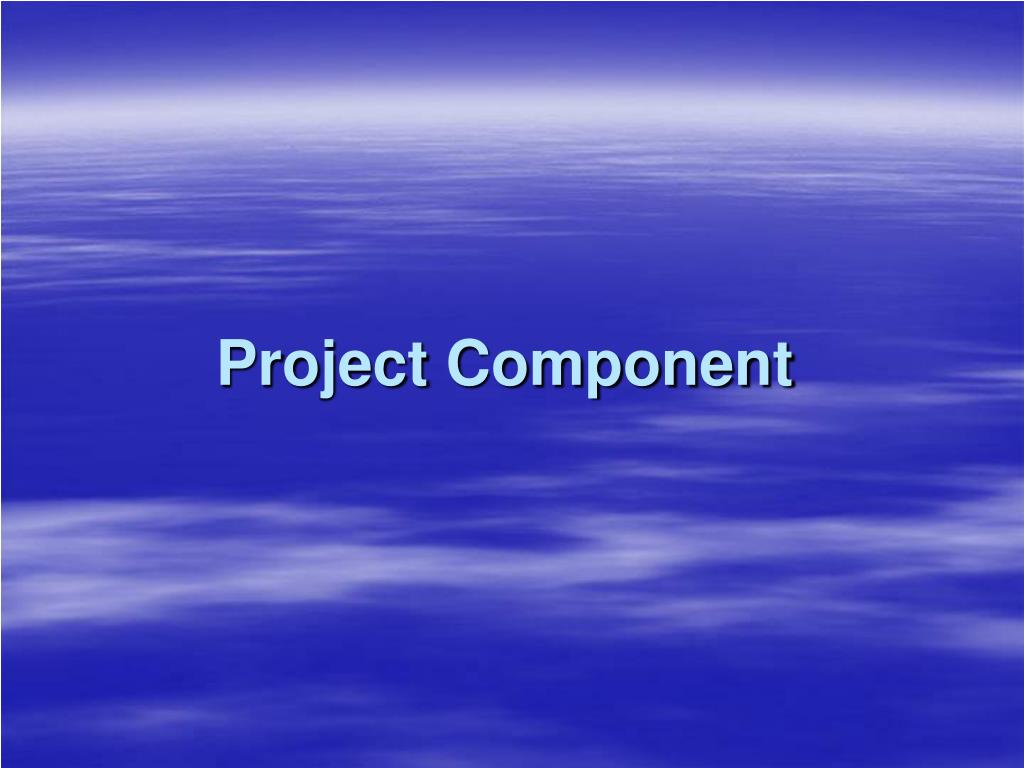 Project Component
