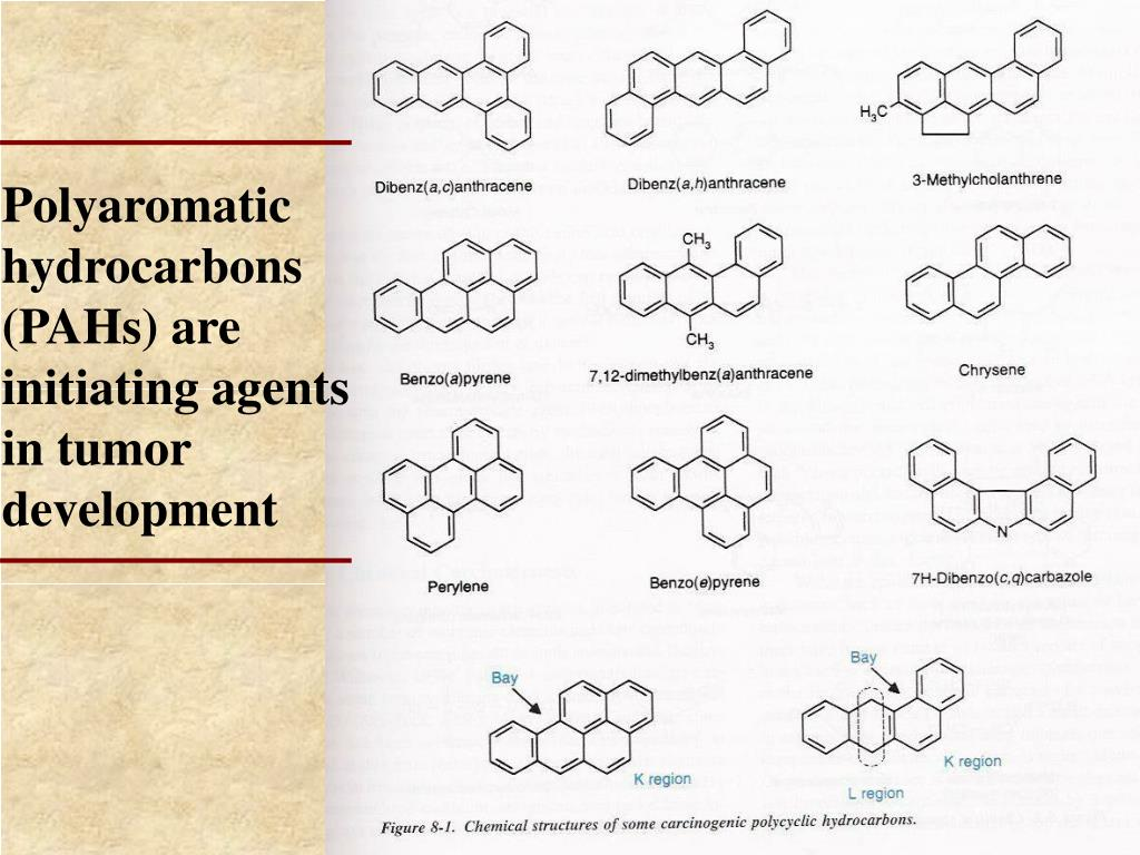 Polyaromatic hydrocarbons (PAHs) are initiating agents in tumor development