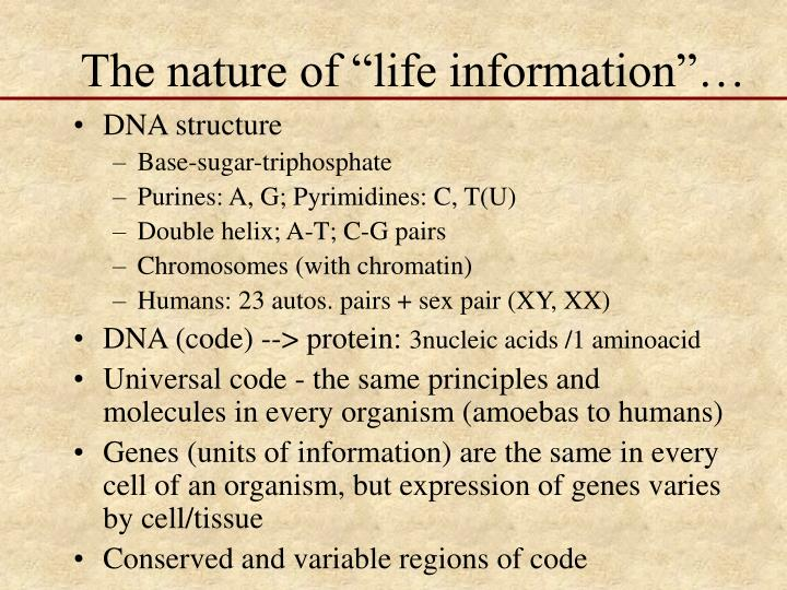 The nature of life information l.jpg