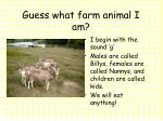 guess what farm animal i am3