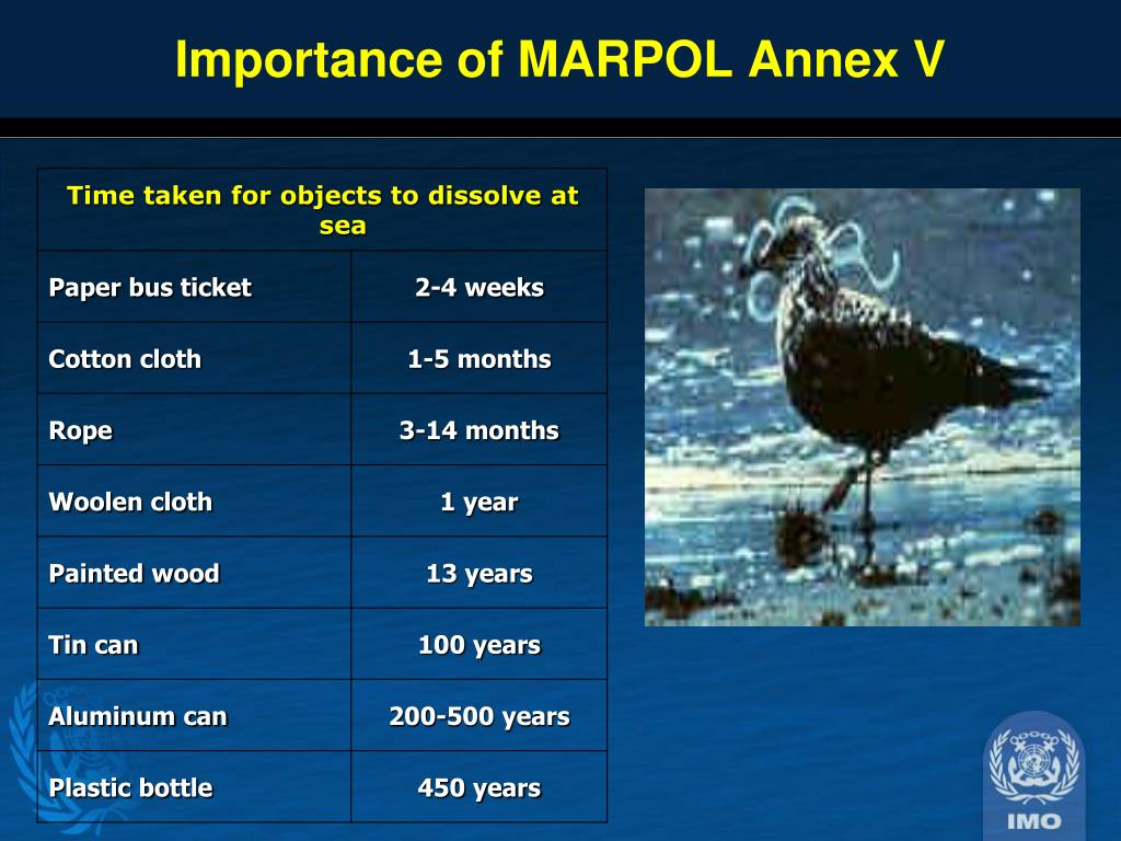 Importance of MARPOL Annex V