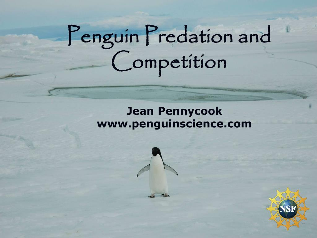 Penguin Predation and Competition