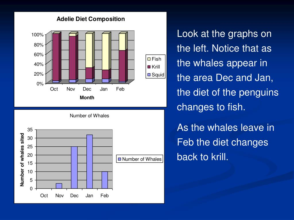 Look at the graphs on the left. Notice that as the whales appear in the area Dec and Jan, the diet of the penguins changes to fish.
