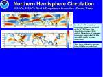 northern hemisphere circulation