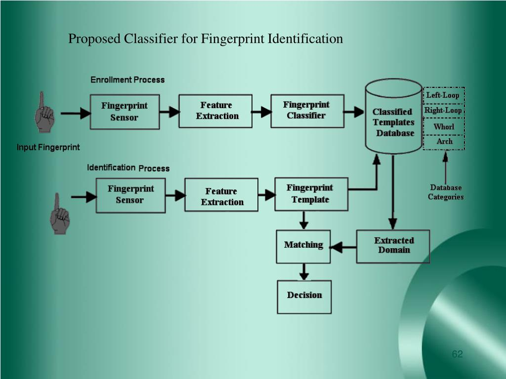 Proposed Classifier for Fingerprint Identification