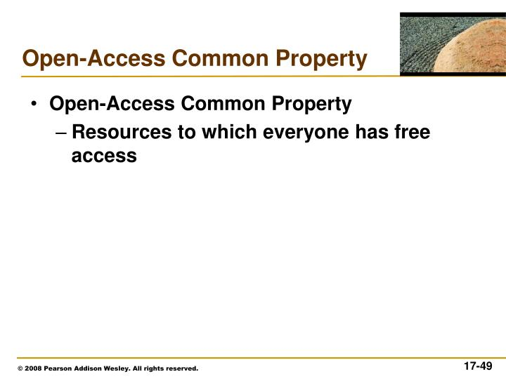 Open-Access Common Property