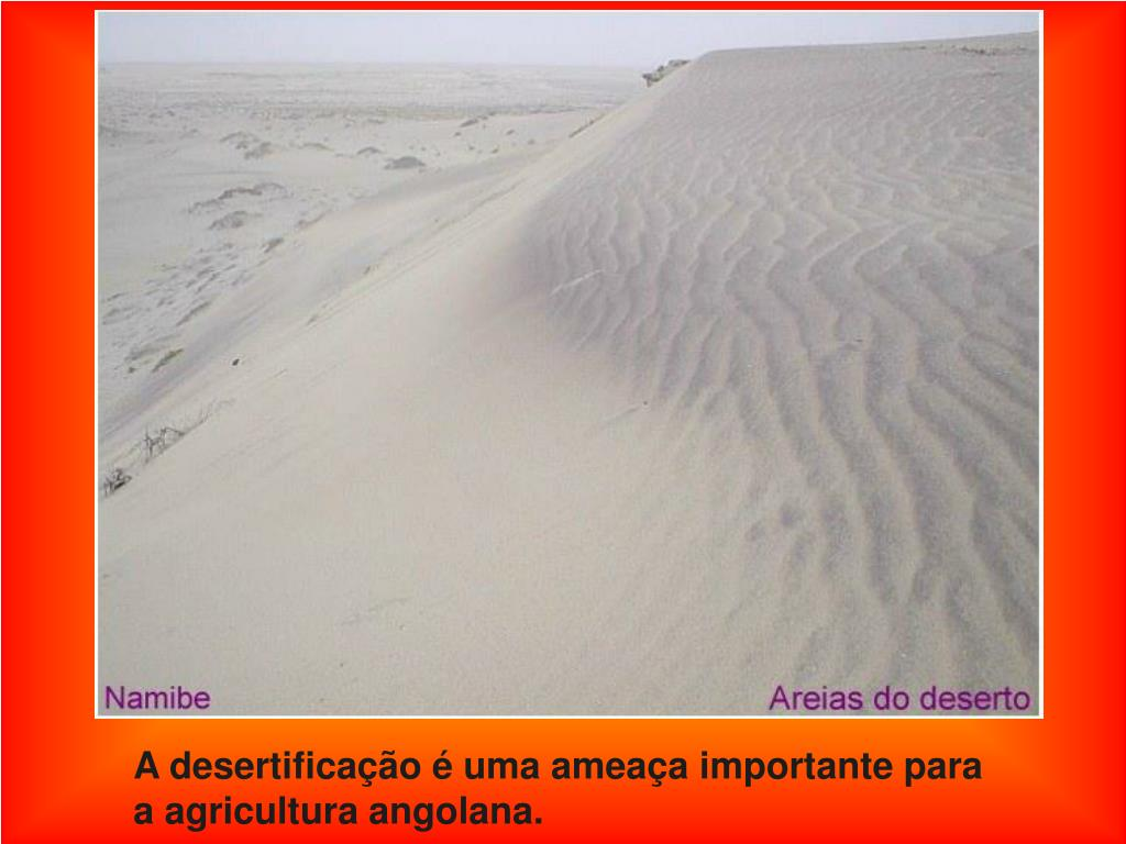 A desertificação é uma ameaça importante para