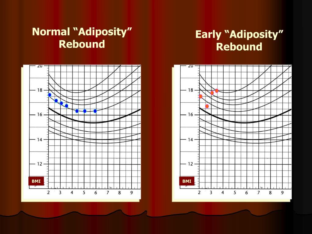 "Normal ""Adiposity"" Rebound"