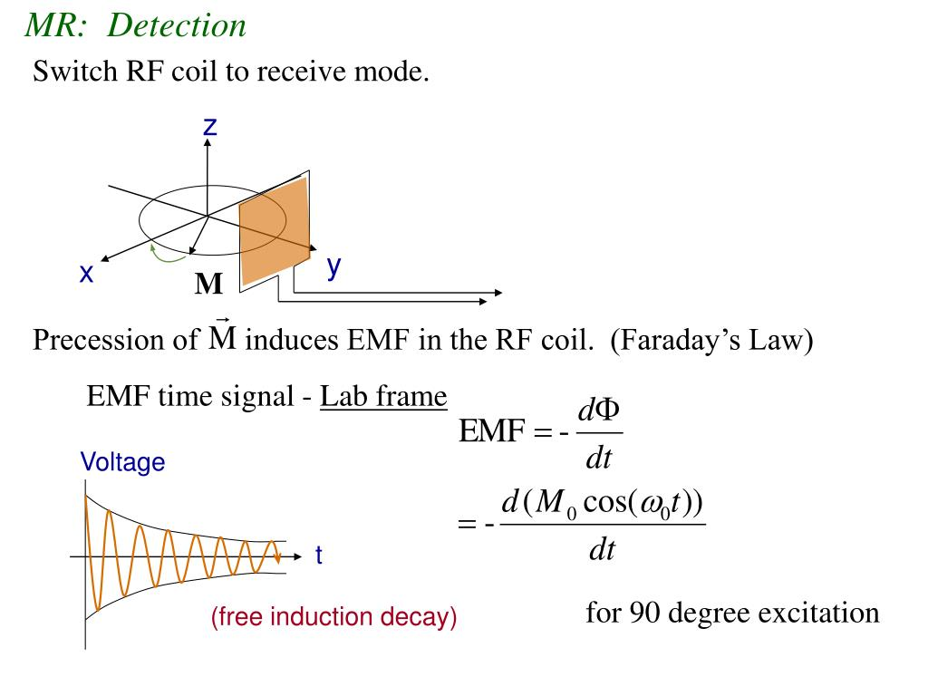 Precession of      induces EMF in the RF coil.  (Faraday's Law)