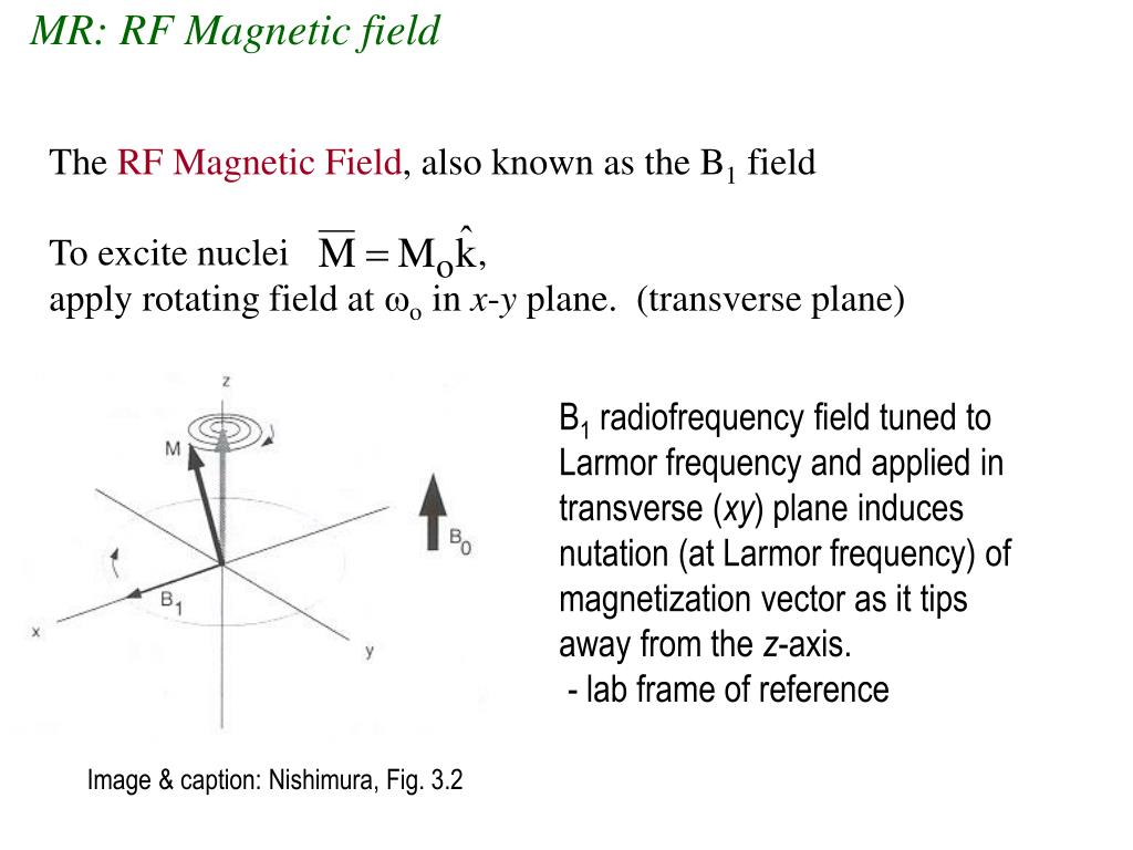 MR: RF Magnetic field