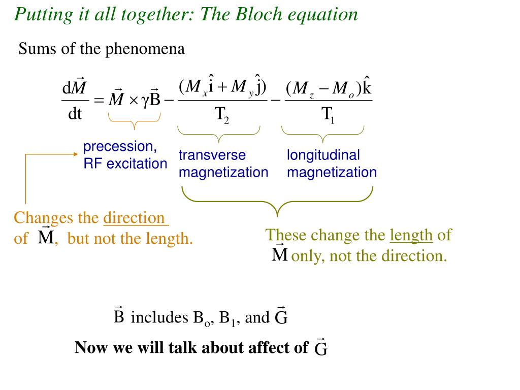 Putting it all together: The Bloch equation