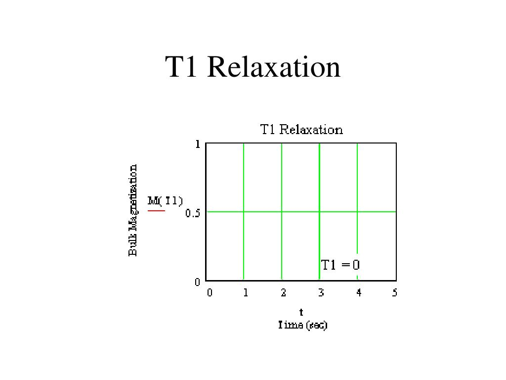 T1 Relaxation