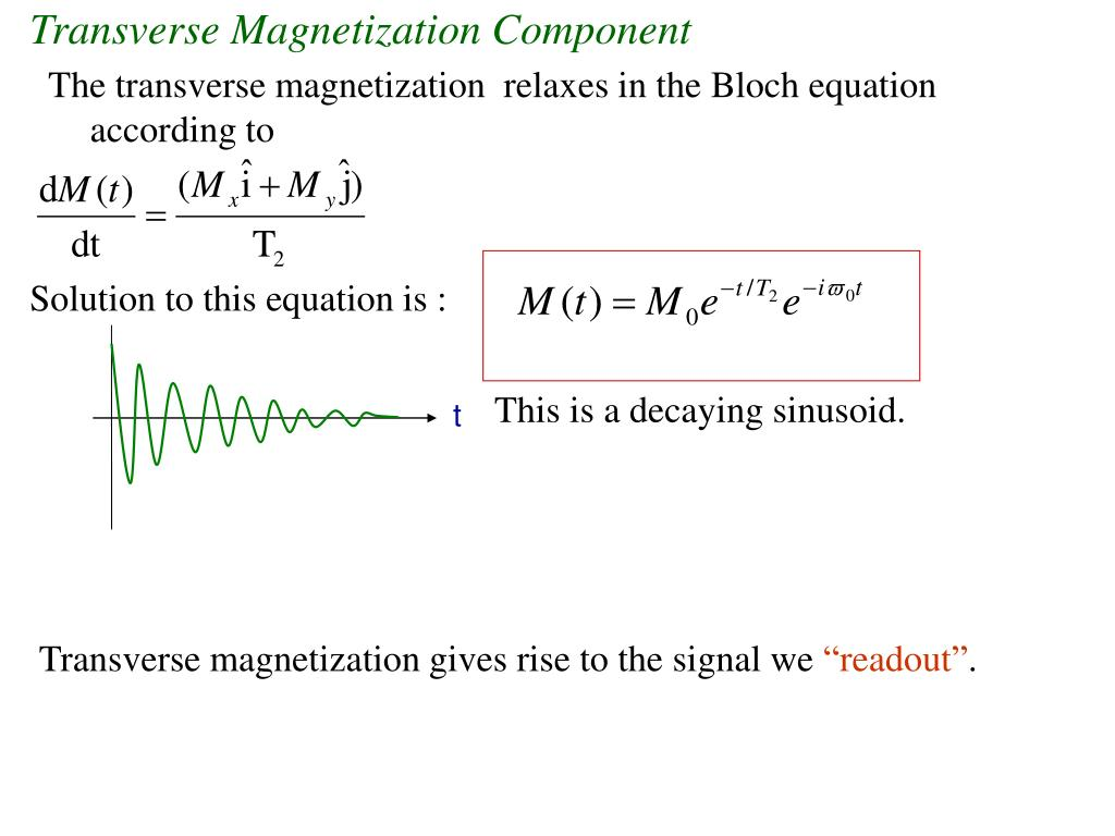 Transverse Magnetization Component