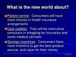 what is the new world about