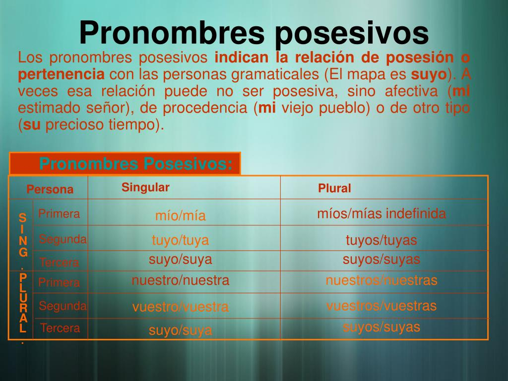 Pronombres posesivos