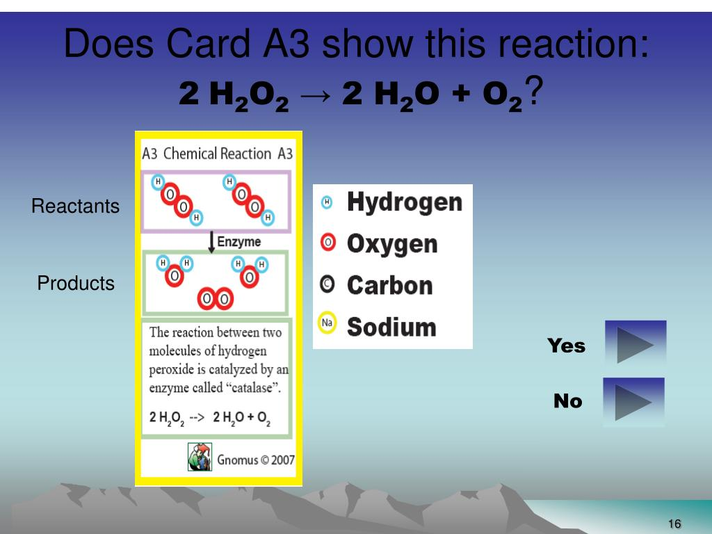 Does Card A3 show this reaction: