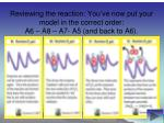 reviewing the reaction you ve now put your model in the correct order a6 a8 a7 a5 and back to a6