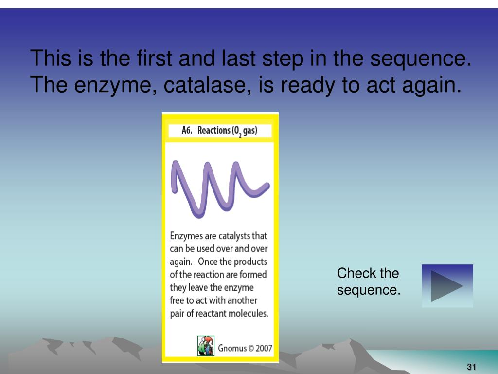 This is the first and last step in the sequence.  The enzyme, catalase, is ready to act again.