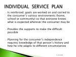 individual service plan2