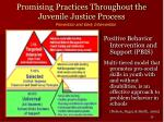 promising practices throughout the juvenile justice process28