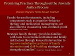 promising practices throughout the juvenile justice process35