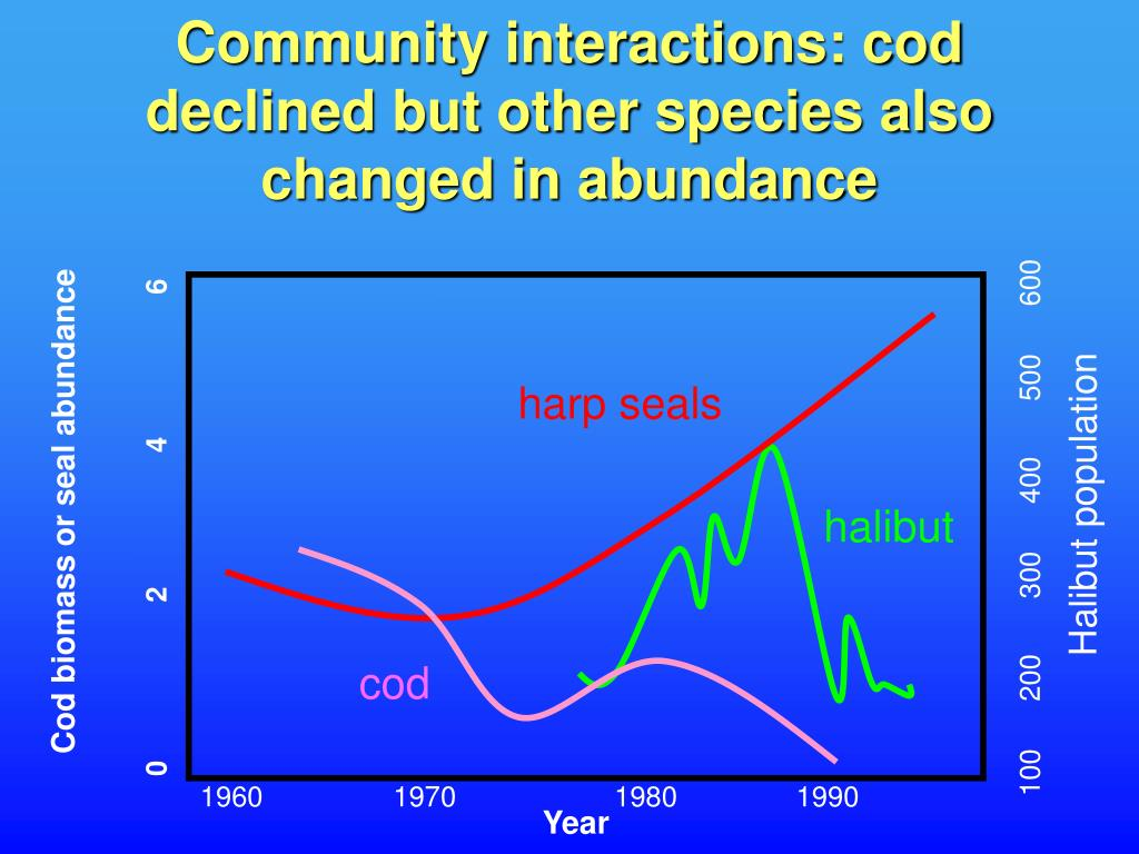 Community interactions: cod declined but other species also changed in abundance