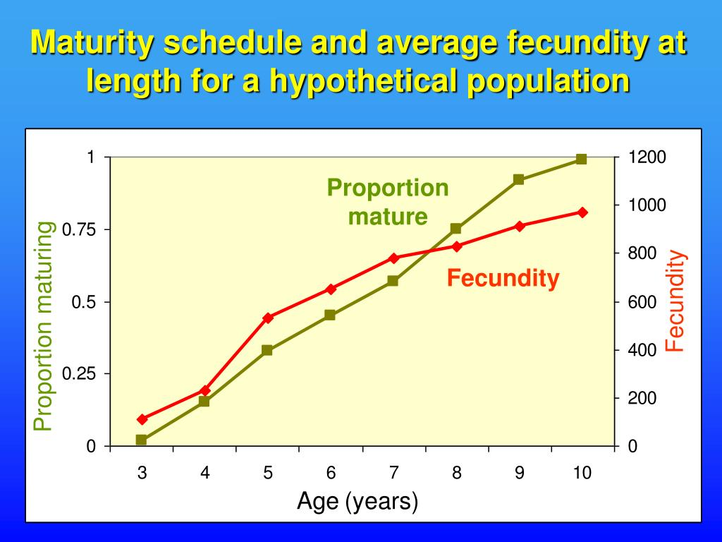 Maturity schedule and average fecundity at length for a hypothetical population