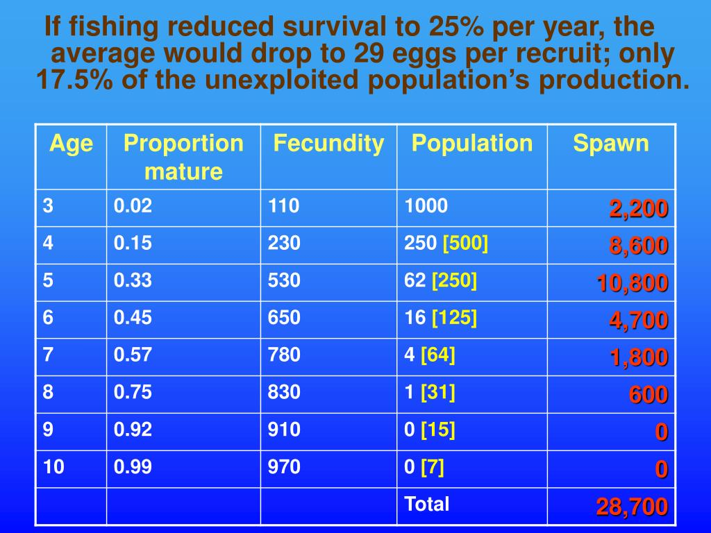 If fishing reduced survival to 25% per year, the average would drop to 29 eggs per recruit; only 17.5% of the unexploited population's production.