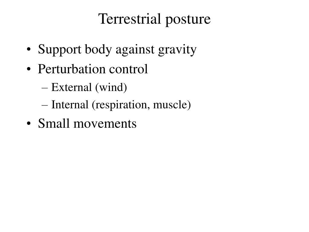 Terrestrial posture