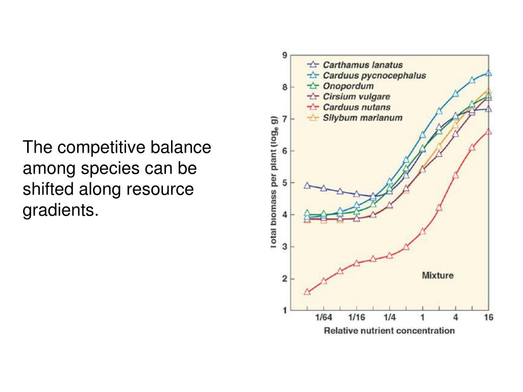 The competitive balance among species can be shifted along resource gradients.