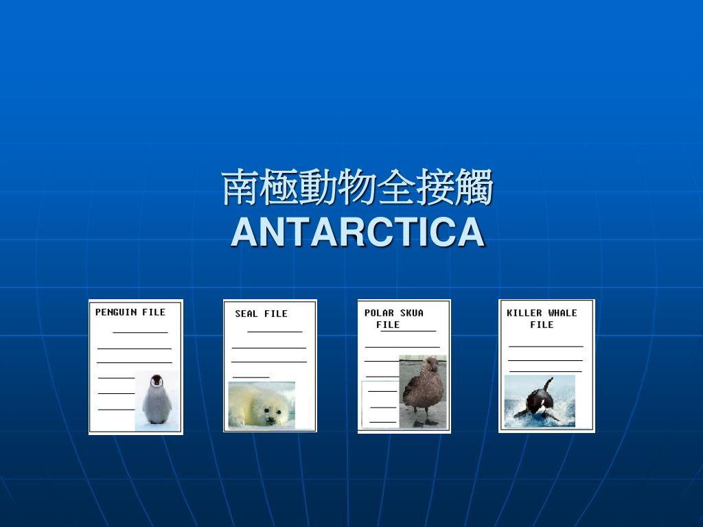 南極動物全接觸