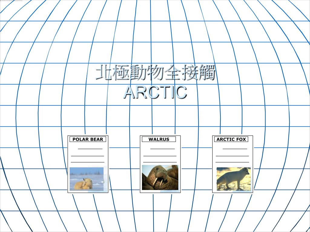 北極動物全接觸