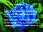 tentang black forest