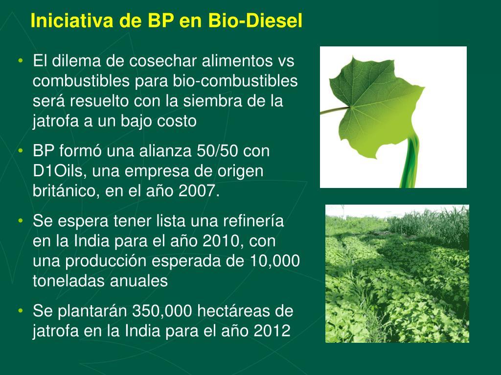 Iniciativa de BP en Bio-Diesel