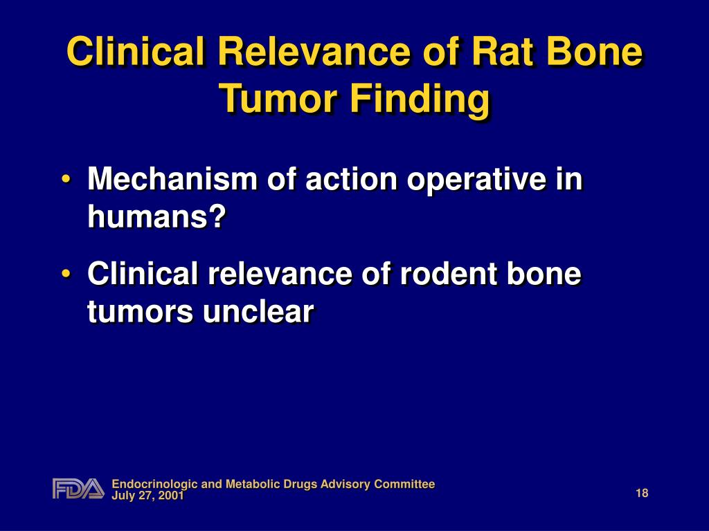 Clinical Relevance of Rat Bone Tumor Finding