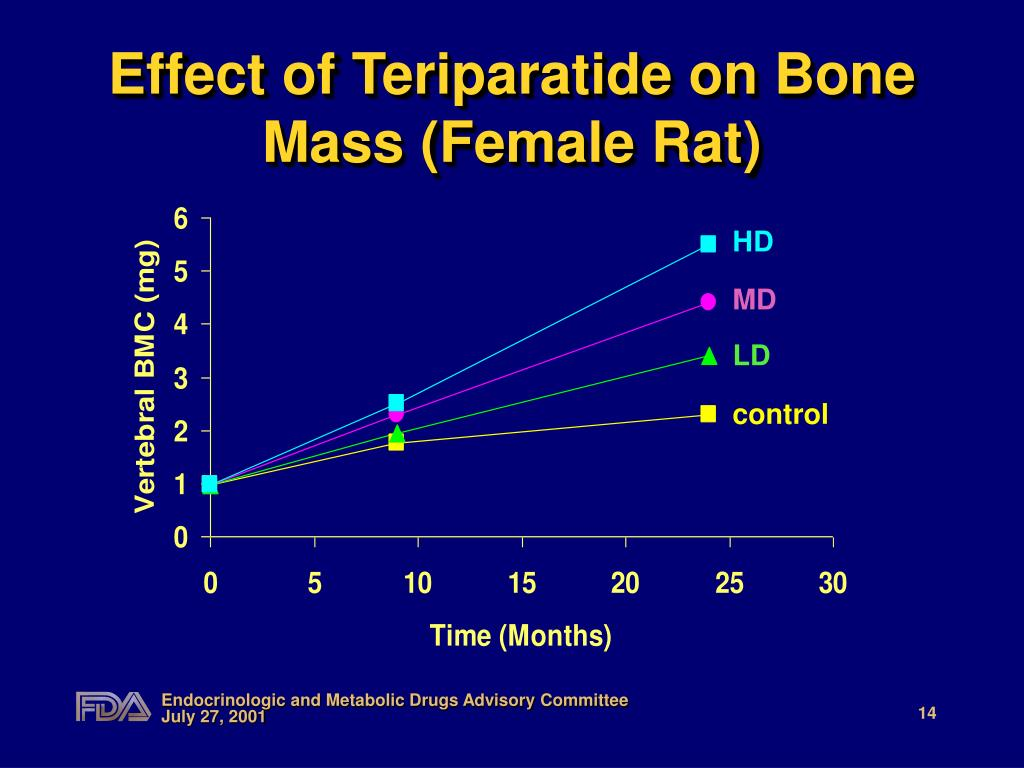 Effect of Teriparatide on Bone Mass (Female Rat)