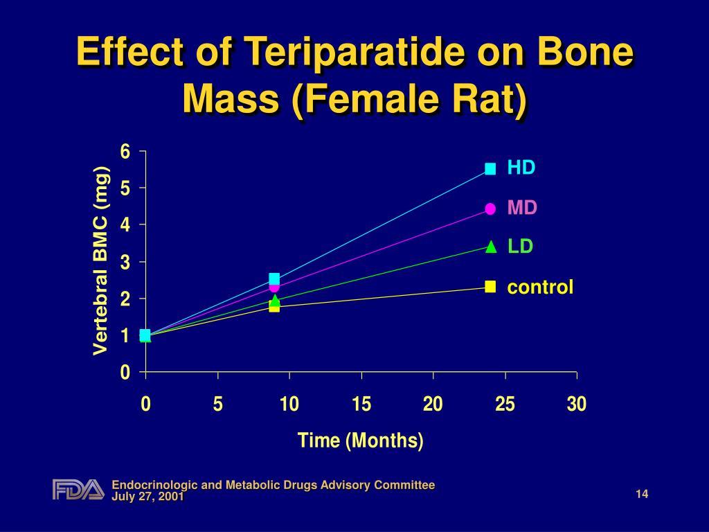 Effect of Teriparatide on Bone Mass (Female Rat)