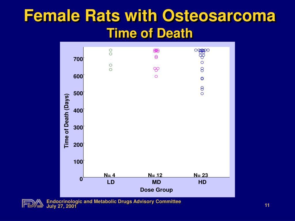 Female Rats with Osteosarcoma